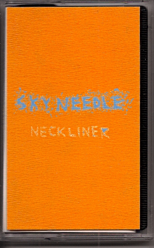skyneedlecoverimage