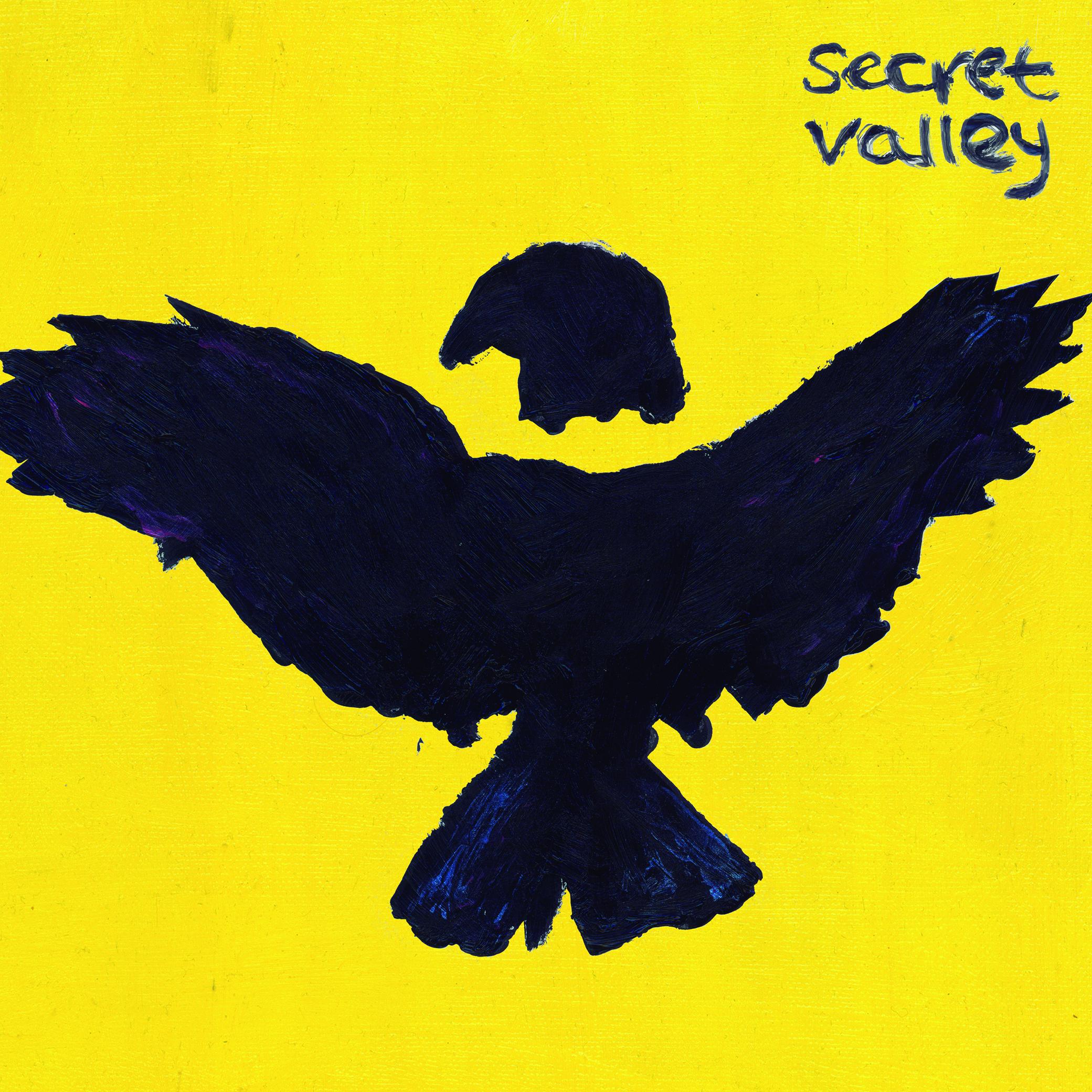 SECRET VALLEY front cover(1)